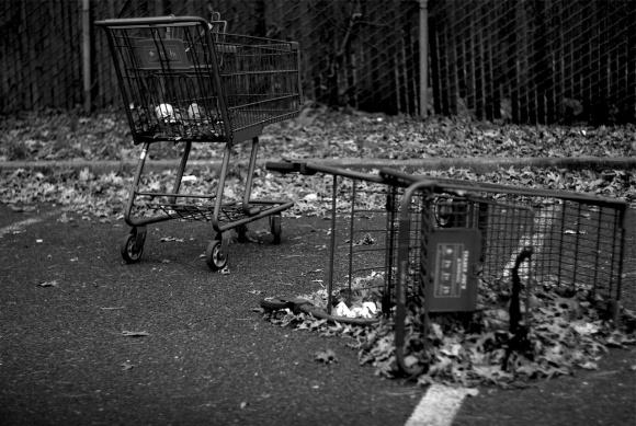 carts (1)