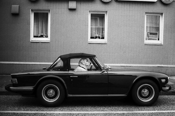 triumph-tr6-Mark Thomas - Downloaded from 500px_jpg